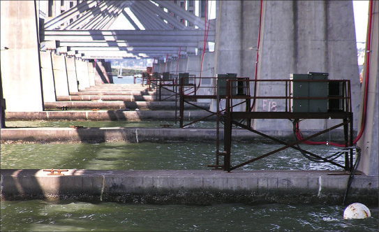 Photo 2. The temporary power for the San Francisco (SFO) Bay Bridge project started with fourteen 500 kV medium voltage transformers (under the existing bridge), and a backup 1 mega-watt diesel generator (expandable to 2.5 MW). The big challenge was cabling underwater from the existing bridge to 14 cofferdams and 14 tower cran