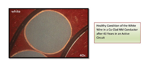 Figure 7. Healthy condition of the white wire in a Cu-Clad NM conductor after 43 years in an active circuit.